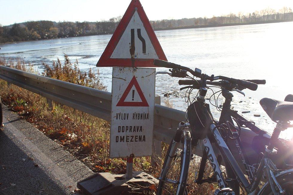 Loňská sanace rybníka Dřemliny kvůli nákaze, pomohla k letošním rekordním výnosům