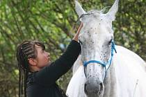 Koně i jezdci zdolávali od 20 do 100 kilometrů