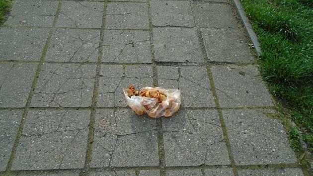 Jídlo končilo na zemi.
