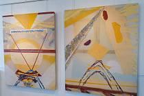 Výstava prací malíře Františka Januly v těchto dnech finišuje v městské galerii ve Vodňanech.