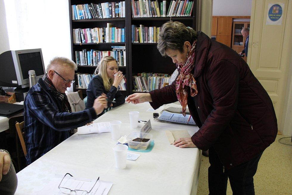 K říjnovým volbám se v Němčicích nepodařilo sestavit kandidátku, tuto sobotu si mohou voliči vybírat ze dvou.