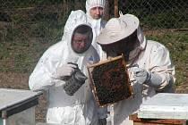 Veterinář kontroluje včelstva na Strakonicku.