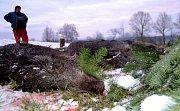 Lesní správa Vodňany pořádala první zimní zpoplatněnou naháňku v lesích nad obcí Skočice.