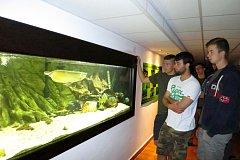 Hlavním lákadlem pro návštěvníky je 17 akvárií se stovkou druhů ryb z různých geografických oblastí.