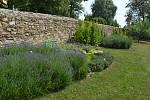 Zahrada Domova svatého Linharta je oázou pro všechny příchozí.