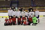 Příměstský hokejový tábor si děti ve Strakonicích doslova užívaly.