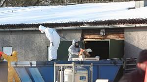 Zdolávání nákazy ptačí chřipkou na jihu Čech v roce 2017