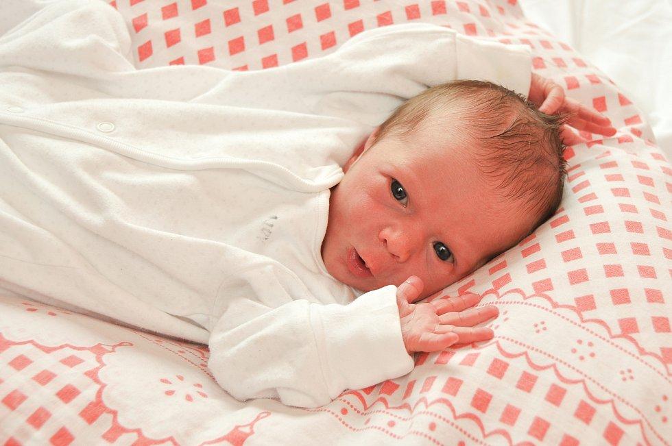 Amálka Fořtová z Volar. Amálka se narodila 20. července 2019 v 10 hodin a 33 minut a její porodní váha byla 3 200 gramů. Pavlík (3) už se na sestřičku moc těšil. foto Ivana Řandová
