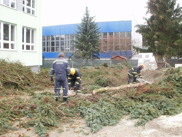 Hasiči poráželi stromy na pozemcích u školy v ulici Zvolenská.