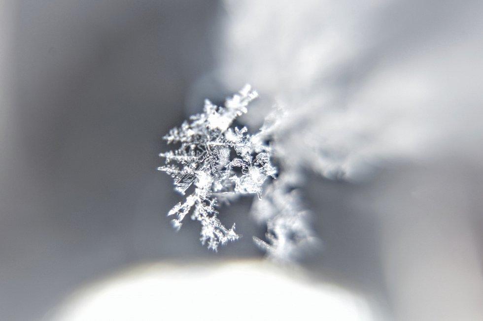 Krása zimní přírody.