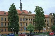 Stromy před  Základní školou J. A. Komenského v Blatné
