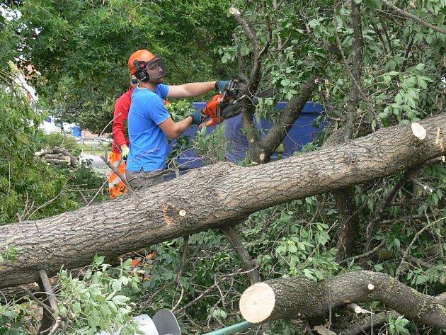 Odklízení následků vichřice pokračovalo ve Strakonicích i ve čtvrtek. Na snímku pracovníci technických služeb likvidují vyvrácený strom za tržnicí u kostela sv. Markéty.