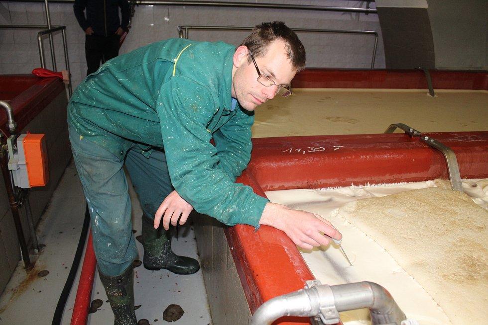 Jan Tumpach měří v kvasné kádi teplotu.