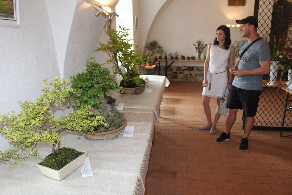 Výstava květin a obrazů v Pošumavské tržnici.