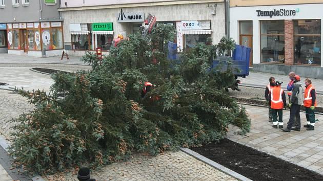 Vánoční stromy na Velkém náměstí ve Strakonicích. Jedli vystřídal smrk. Ten se při osazování zřítil k zemi - prasklo lano.