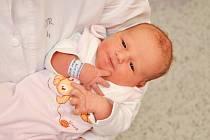 Stella Nováková ze Strakonic. Stella se narodila 11.1.2019 ve 3 hodiny a 58 minut a při narození vážila 3220 g. Na Stelinku se doma těšil bráška Jakoubek, kterému brzy budou 3 roky.