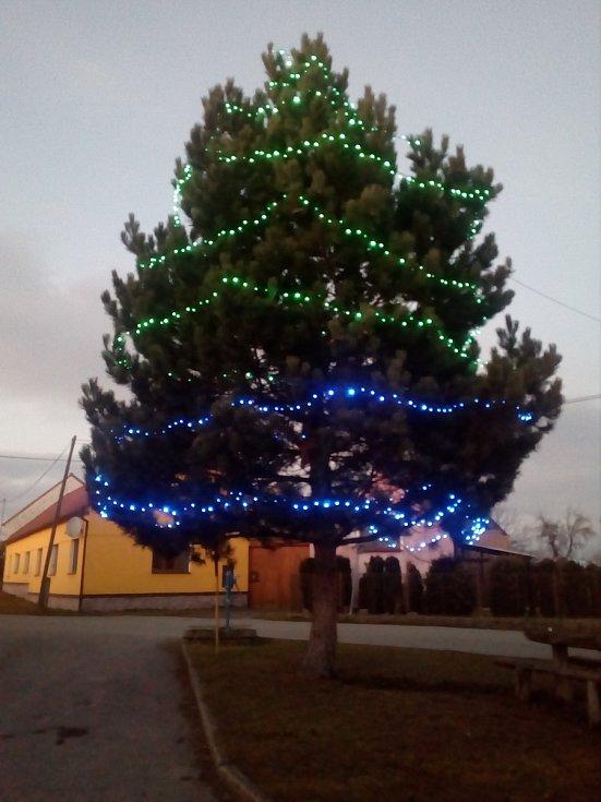 3. Vánoční strom Mladějovice.