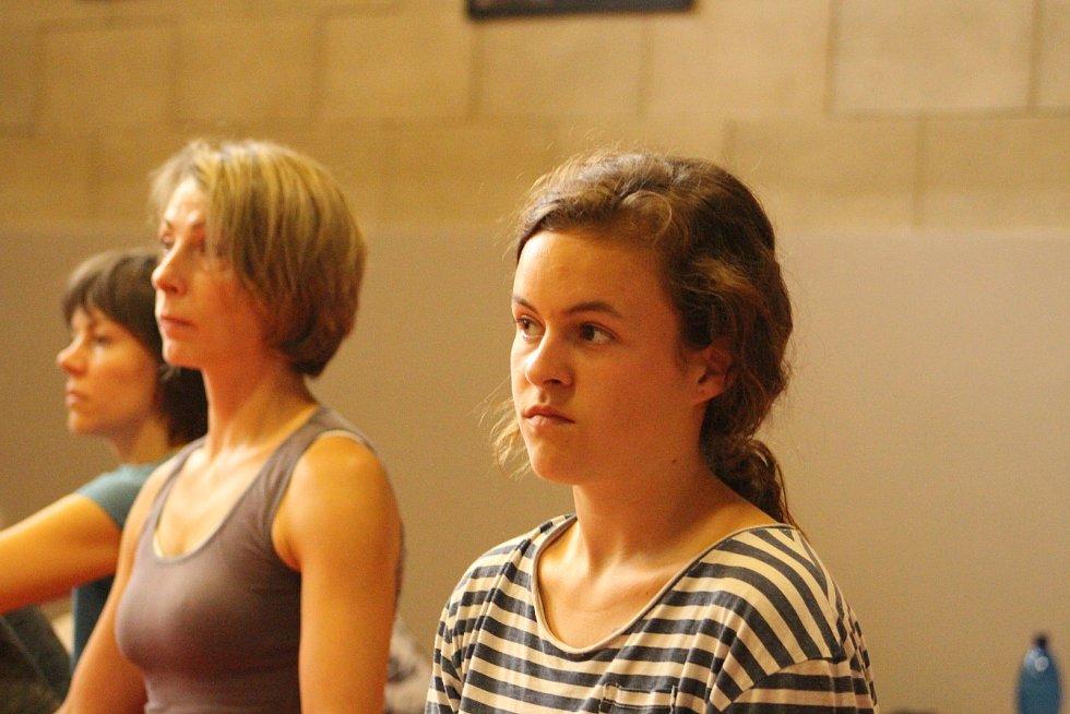 Vodňany - Padesátka sportovních nadšenců si přišla v sobotu 22. června zacvičit jógu.