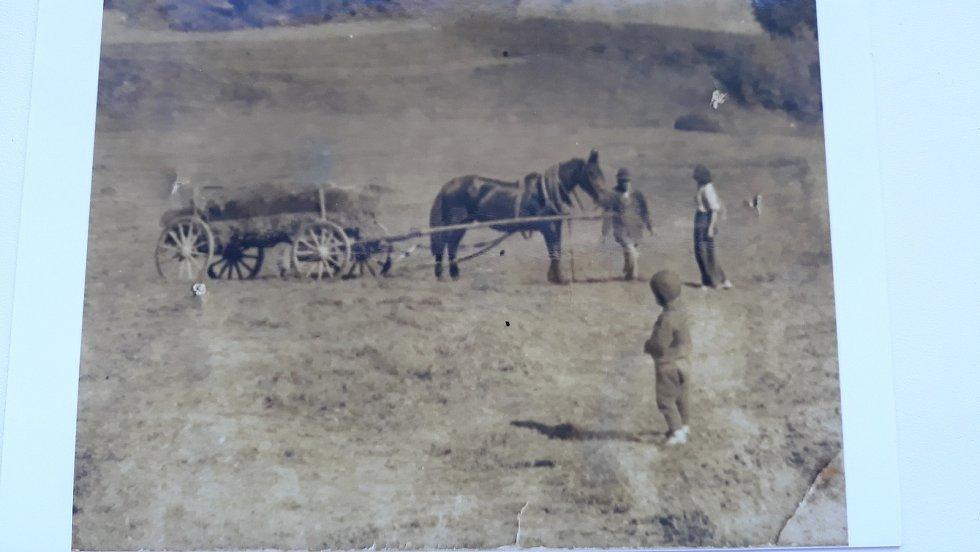 Chatařství u Boršova nad Vltavou: Fotografie z 30. let jsou krásným důkazem o tehdy nezalesněném údolí Vltavy, kde sedláciz Jamného a Zahorčic sklízeli na svazích seno.