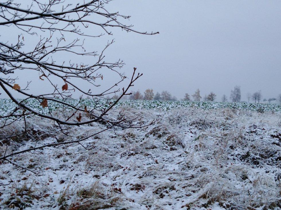 První sníh má být jednodenní záležitostí.
