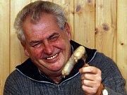 Expremiér Miloš Zeman navštívil družstevníky v Hošticích u Volyně.