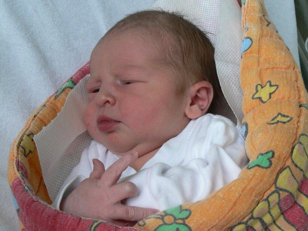 Michal Bárta, Strakonice, 24.1. 2013 v 9.49 hodin, 3660 g. Z prvního miminka má radost nejen maminka.