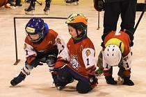 Děti dělaly ve Strakonicích první hokejové krůčky.