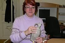 Helena Bělohlavová ze Strakonic se drátování věnuje skoro osmnáct let.