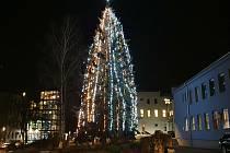 Vánoční strom v areálu strakonické nemocnice.