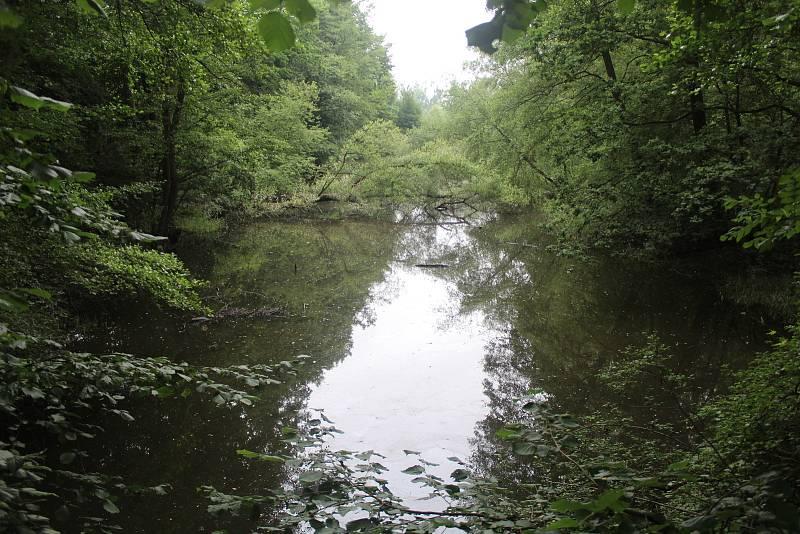 Stará řeka.
