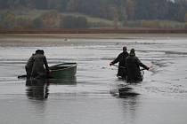 Rybáři Blatenské ryby lovili největší rybník na Blatensku  - Labuť v Myšticích.