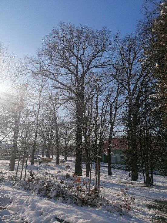 Zimní procházka vodňanskými ulicemi.