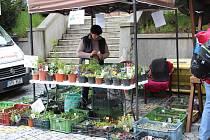 Farmářské trhy ve Strakonicích