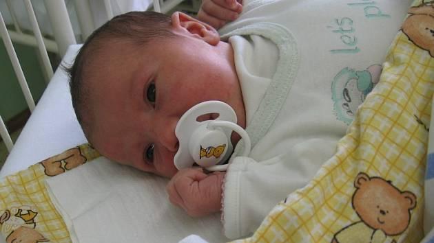 Kristýna Lebedová se rodičům Lucii a Milanovi z Neratovic narodila17. června 2008, vážila 3,65 kg a měřila 51 cm. Na sestřičku se těší 2,5letá Natálka.