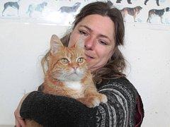 Jassper čeká na novou životní šanci od června 2015.