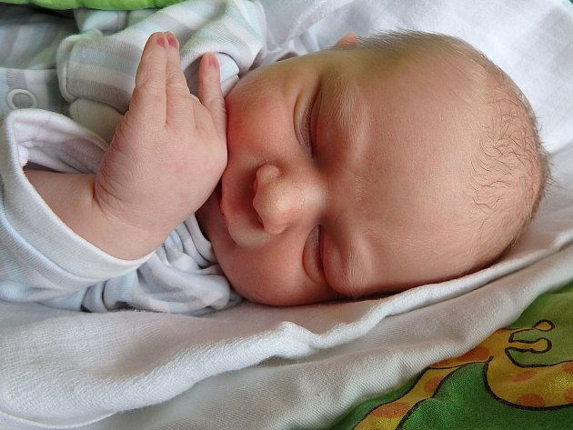 Vojtěch Jansa se narodil rodičům Michaele a Tomášovi 25. června 2017, měřil 52 centimetrů a vážil 3500 gramů. Doma se na něho těšila sestřička Eliška.
