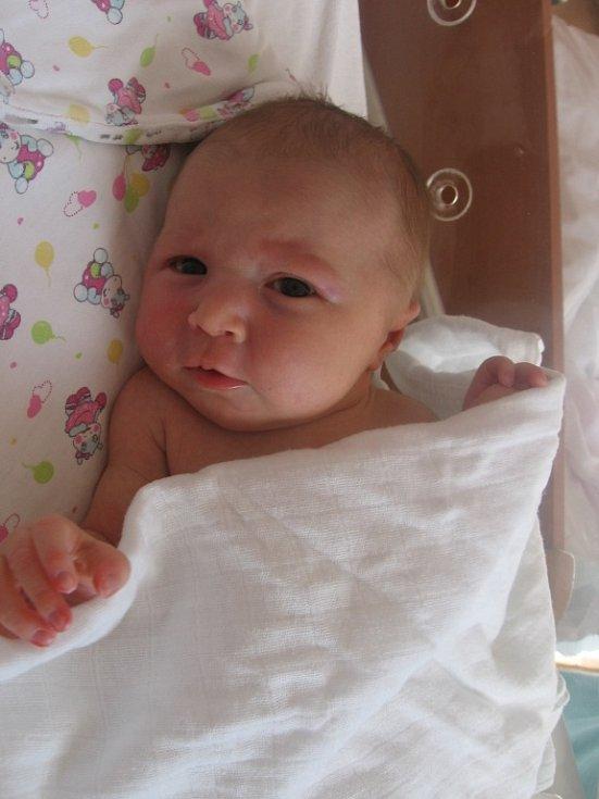 Alena Rousová se rodičům Ivetě a Michalovi z Prahy narodila v mělnické porodnici 13. března 2017, vážila 3,43 kg a měřila 50 cm. Na sestřičku se těší roční Lubošek a 6letý Toník.