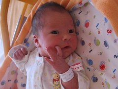 Hana Volfová se rodičům Andree Veselé a Petru Volfovi z Milovic narodila v mělnické porodnici 30. července 2015, vážila 2,89 kg a měřila 48 cm. Na sestřičku se těší 1,5letý Richard.