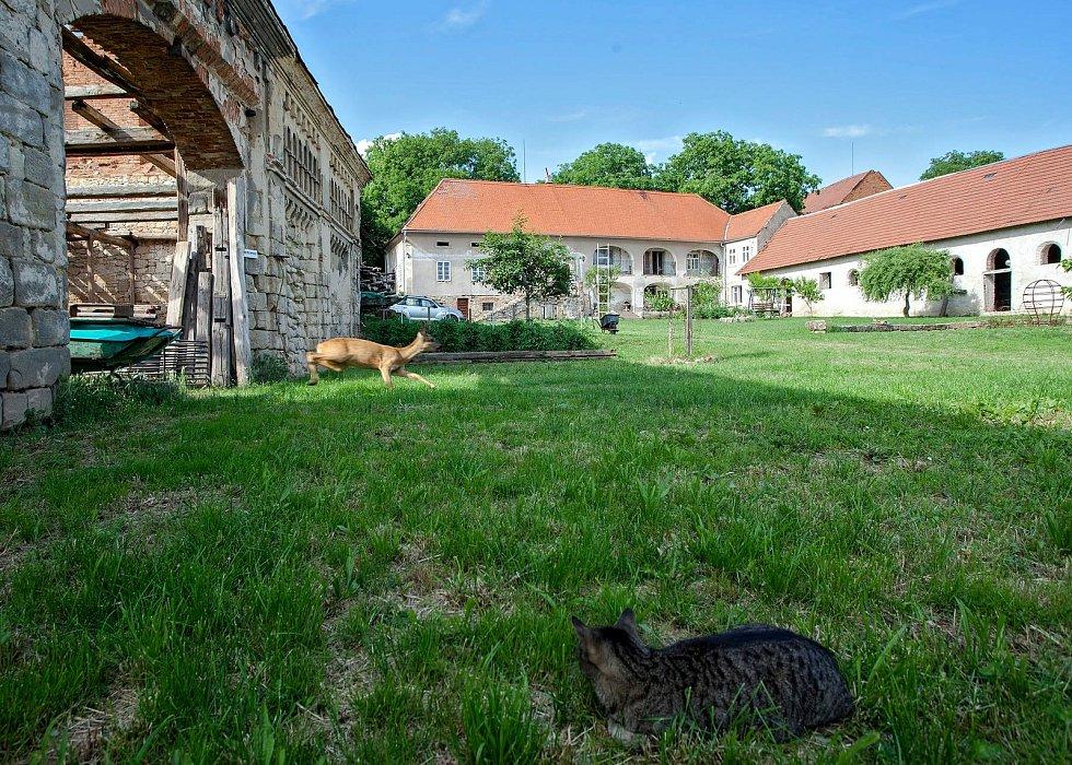 Farmstudio sídlí na statku ve Vysoké na Mělnicku.