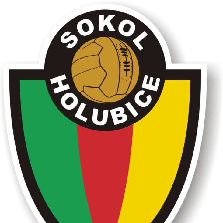Sokol Holubice