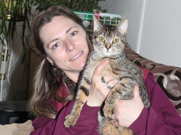Sisinka (na snímku s Jaroslavou Tichou) patří mezi skoro čtyřicet koček z mělnického útulku.