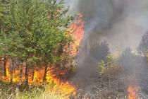 Požár lesa u obce Vojkovice 2. července 2019.