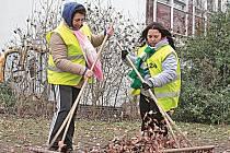 Veřejně prospěšné práce u mělnických technických služeb znamenají především úklid, v současné době třeba hrabání listí.