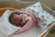 JOSEFÍNA ŠTEFÍKOVÁ se rodičům Anně Honzátkové a Karlu Štefíkovi z Prahy Vinoře, narodila v mělnické nemocnici 17. 4. 2018, vážila 3,740 kg, měřila 50 cm. Doma na ni čeká Vojta 7 let.