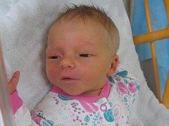 Naděžda Mikulecká se rodičům Naděždě Steinové a Martinovi Mikuleckému z Dolních Beřkovic narodila v mělnické porodnici 30. září 2016, vážila 3,38 kg a měřila 51 cm. Na sestřičku se těší Martin a Monika.
