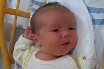 Amálie Štylerová se rodičům Michaele Khorelové a Pavlu Štylerovi z Jelenic narodila v mělnické porodnici 1. prosince 2014, vážila 3,98 kg.