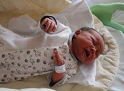 Petr Linka se rodičům Heleně a Janovi z Liběchova narodil 21. července 2017 v mělnické porodnici, měřil 50 centimetrů a vážil 3,26 kilogramu. Doma na něj čeká 7letý Pavel a 8letý Jan.