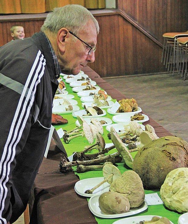 Výstava hub v Nebuželích.