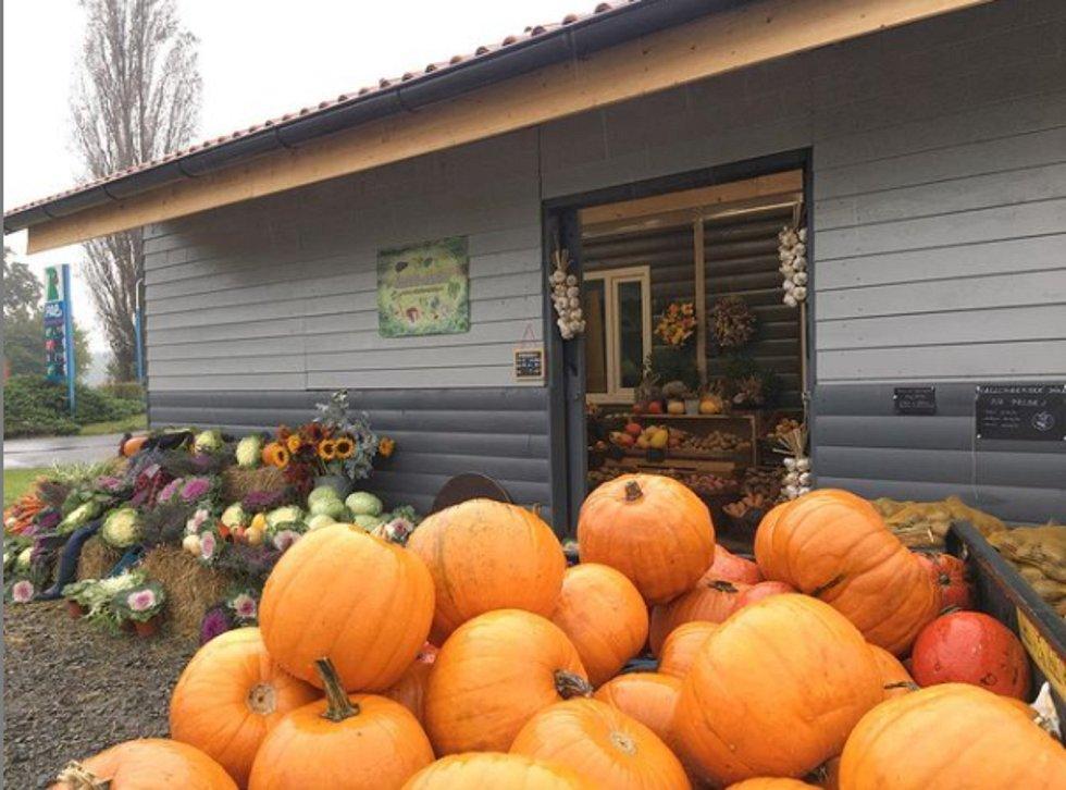 Farma Šťastné saláty loni otevřela stánek přímo v areálu.