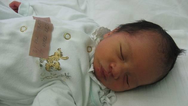 Nguen Tran Truong Tu se rodičům Hien a Duc z Mělníka narodila 12. prosince 2007, vážila 2,28 kilogramu a měřila 49 centimetrů.